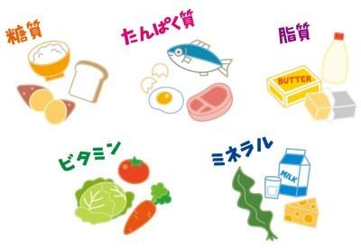 新型栄養失調1